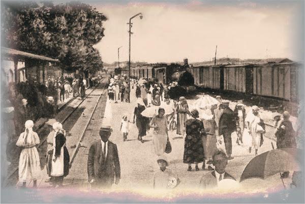 07 - Mamaia tren 1