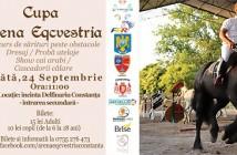 Fb cover Cupa Arena Eqcvestria