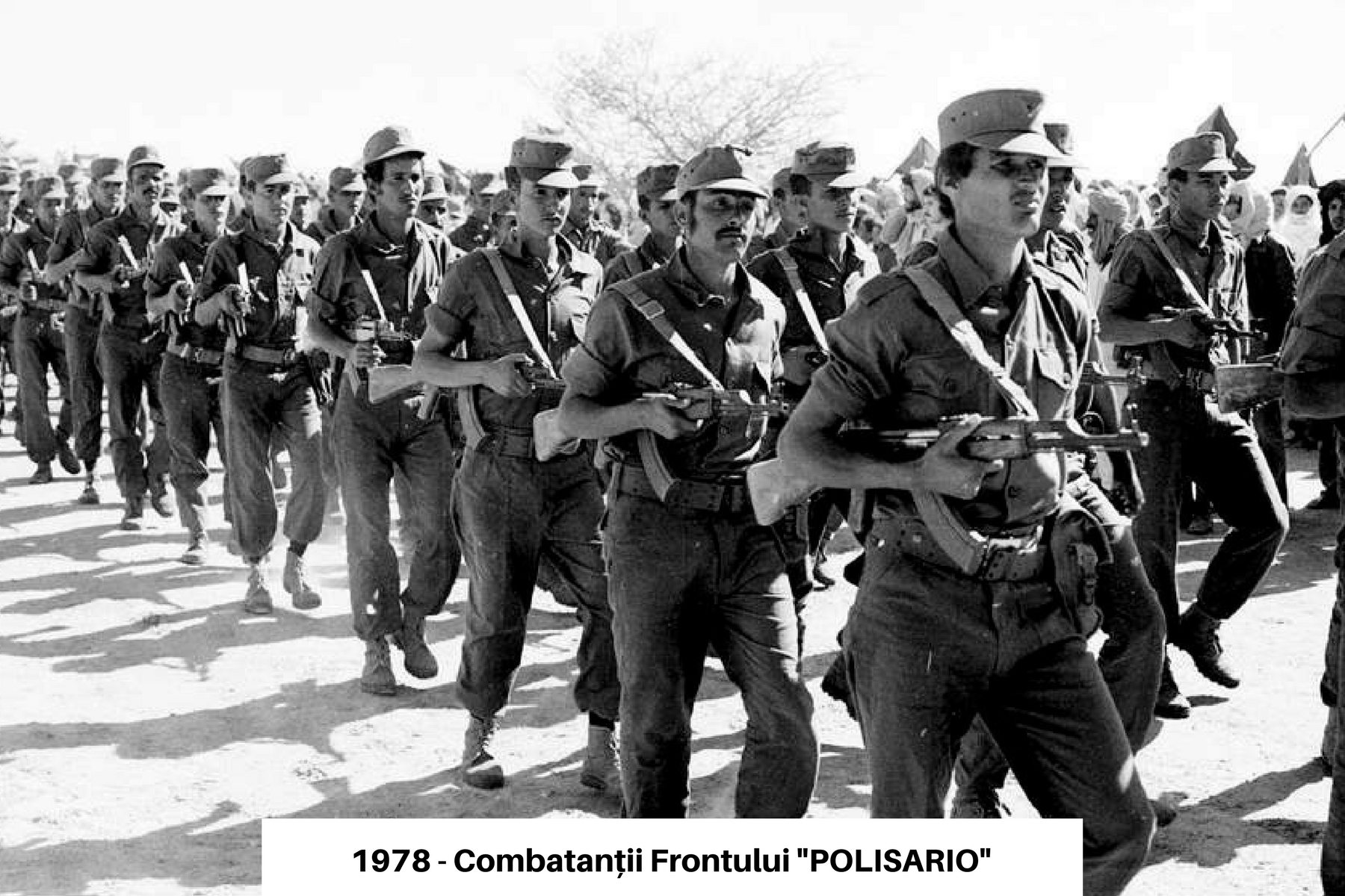 1978 - Combatantii Frontului POLISARIO