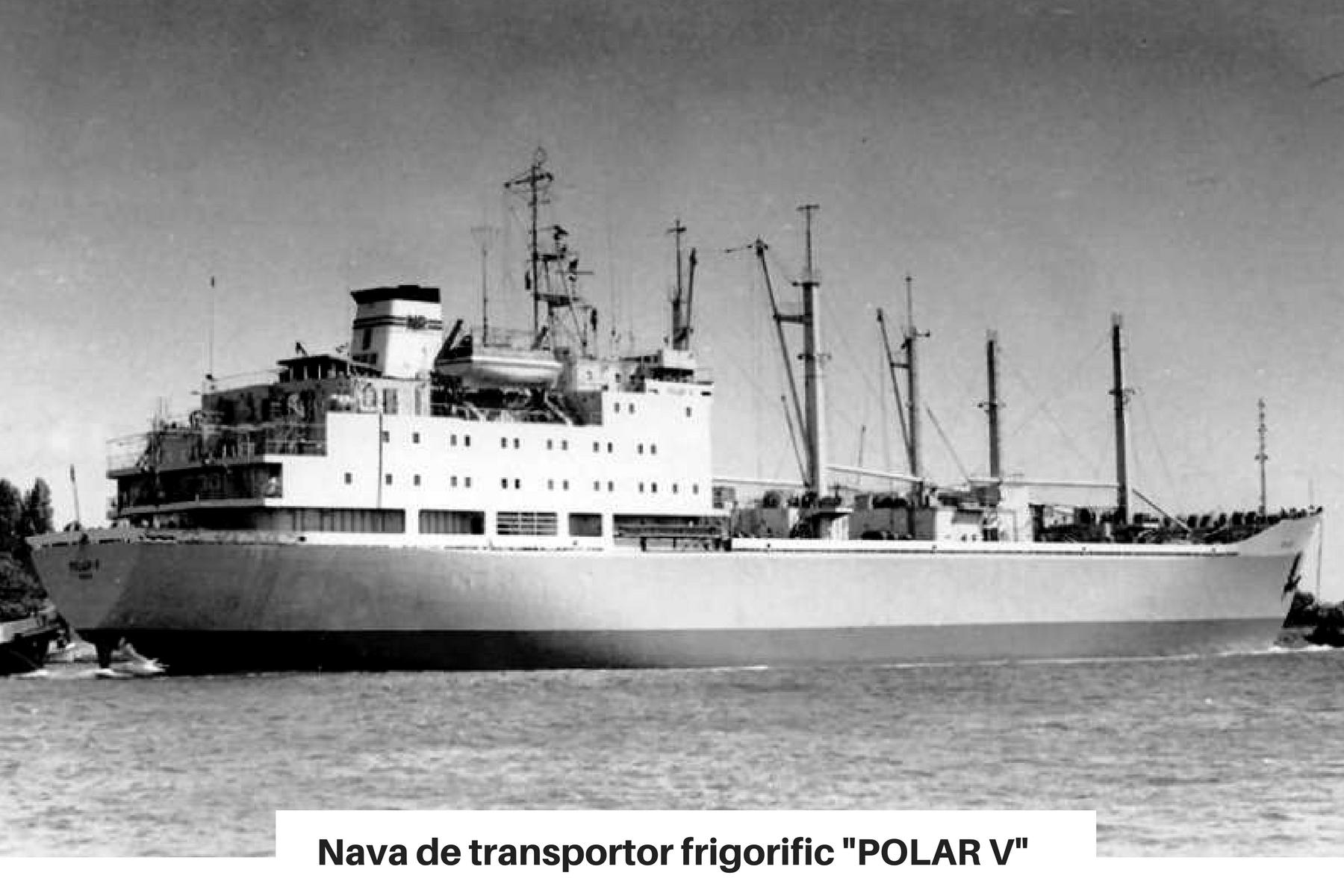 Nava de transport frigorific POLAR V