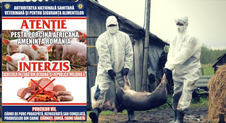 ANSVSA - Romania
