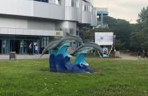 delfinariu