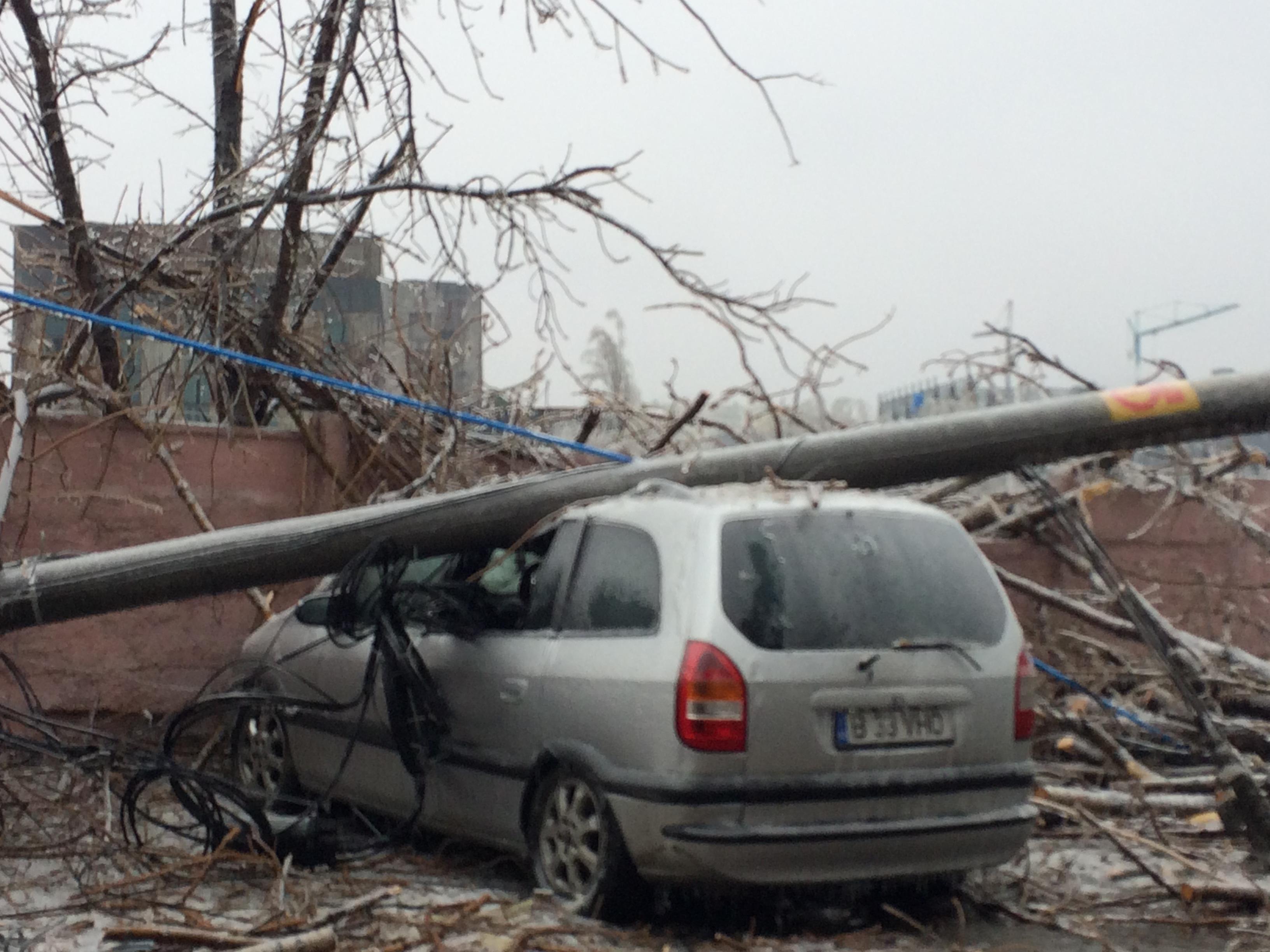 Bucuresti-26-Ianuarie-2019