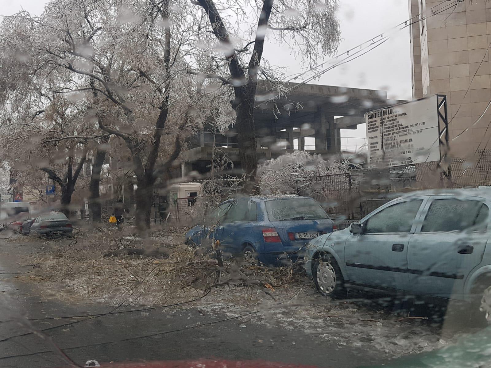 Bucuresti 2019-01-26 / 12.12.31