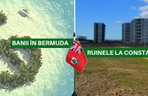 Banii in Bermuda