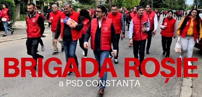 Brigada Rosie a PSD Constanta
